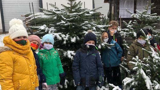 Ein Baum für die Schule